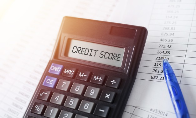 Which of the following most influences your credit score?